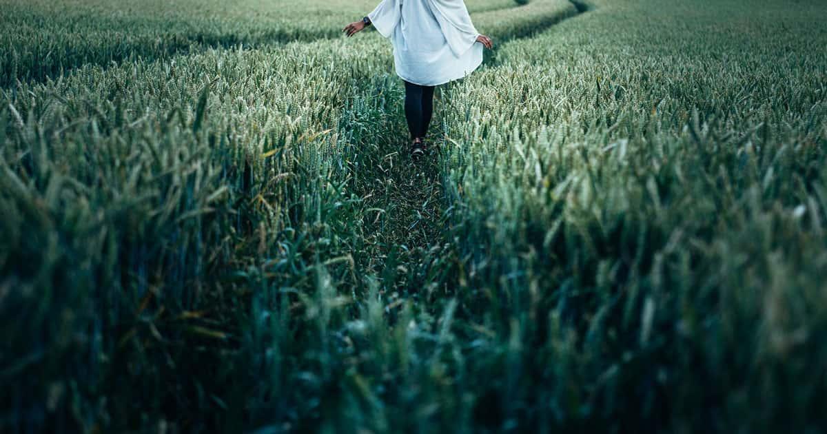 femme de dos dans un champ de blé vert